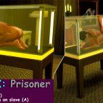 YrSa –Glass Box Prisoner